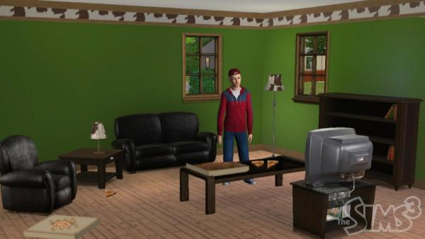 Sims 3 Zuhause