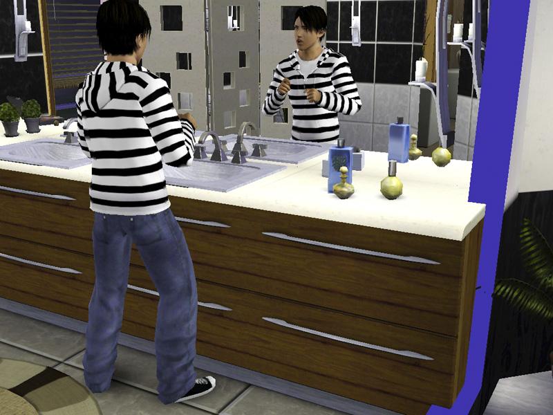 Sims im Spiegel